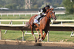 August 29, 2015. Island Town, Brian Hernandez up, wins the Grade III Smarty Jones Stakes, one mile and seventy yards, for three year olds at Parx racing in Bensalem, PA.  The son of Hard Spun is trained by Ian Wilkes. He won by 6 3/4 lengths. (Joan Fairman Kanes/ESW/CSM)