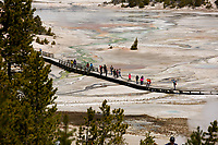 Tourists walk across the Norris Geyser Basin on a boardwalk in Yellowstone National Park, Wyoming on Wednesday, May 24, 2017. (Photo by James Brosher)