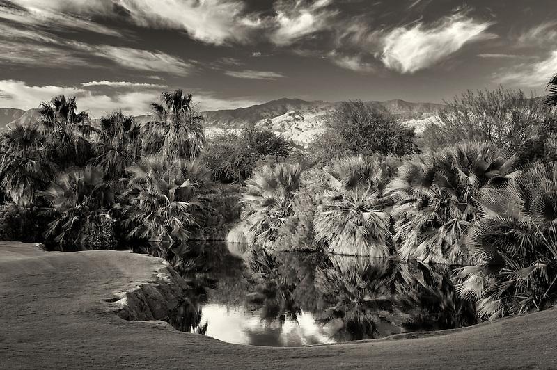 Pond at Desert Willow Golf Resort. Palm Desert, California