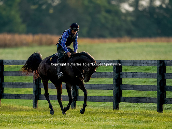 November 8, 2021: Scenes from the Eclipse Sportswire Photo Workshop at Kentucky Downs in Franklin, Kentucky, photo by Charles Toler/Eclipse Sportswire Photo Workshop