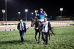 DUBAI, UNITED ARAB EMIRATES - MARCH 25: Vivlos #9 ridden by Joao Moreira (blue hat), takes a victory walk after winning the Dubai Turf at Meydan Racecourse during Dubai World Cup Day on March 25, 2017 in Dubai, United Arab Emirates. (Photo by Douglas DeFelice/Eclipse Sportswire/Getty Images)