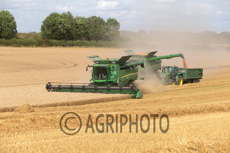 12-8-2021 Harvesting winter wheat in Lincolnshire <br /> ©Tim Scrivener Photographer 07850 303986<br />      ....Covering Agriculture In The UK....