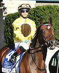 LEXINGTON, KY - OCTOBER 07:  #4 Dancing Rags wins the Darley Alcibiades Stakes at Keeneland on October 7, 2016 in Lexington, Kentucky. (Photo by Jessica Morgan/Eclipse Sportswire/Getty Images)