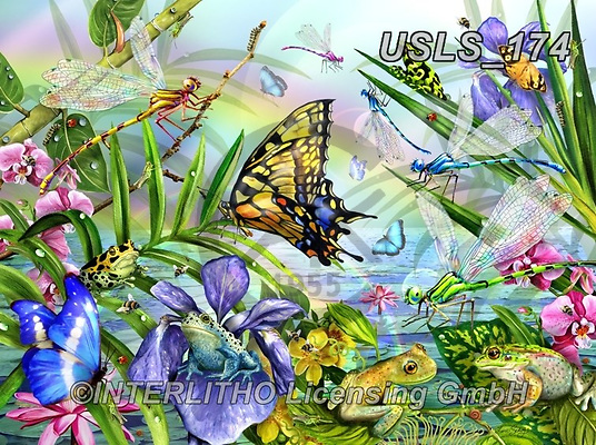 Lori, REALISTIC ANIMALS, REALISTISCHE TIERE, ANIMALES REALISTICOS, zeich, paintings+++++Dragonfly Dance,USLS174,#a#, EVERYDAY ,puzzle,puzzles