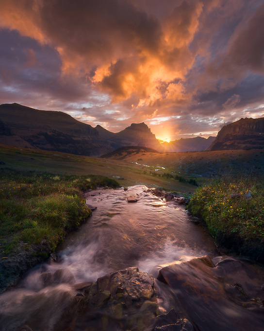 Cascades through the meadow of Glacier Park towards a vibrant sunrise and mountains beyond.