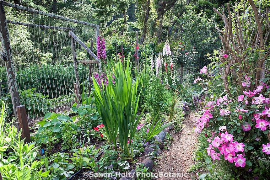 Backyard organic vegetable garden with flowers; MUST CREDIT: Elvin Bishop Garden