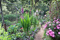 Backyard organic vegetable garden with flowers; MUST CREDIT: Elvin Bishop Garden