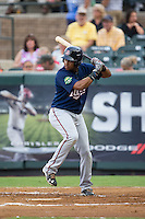 Amaurys Minier (24) of the Elizabethton Twins at bat against the Pulaski Yankees at Calfee Park on July 25, 2016 in Pulaski, Virginia.  The Twins defeated the Yankees 6-1.  (Brian Westerholt/Four Seam Images)