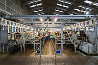 10/12/2020 Milking parlour at night <br /> ©Tim Scrivener Photographer 07850 303986<br />      ....Covering Agriculture In The UK....