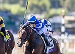 November 1, 2019 : Structor, ridden by Jose Ortiz, wins the Breeders' Cup Juvenile Turf on Breeders' Cup Championship Friday at Santa Anita Park in Arcadia, California on November 1, 2019. Alex Evers/Eclipse Sportswire/Breeders' Cup/CSM