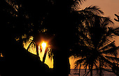 Big Island, Hawaii. Sunset at Kealakekua Bay, where Cook first landed, with golden sky behind silhouetted palm trees.