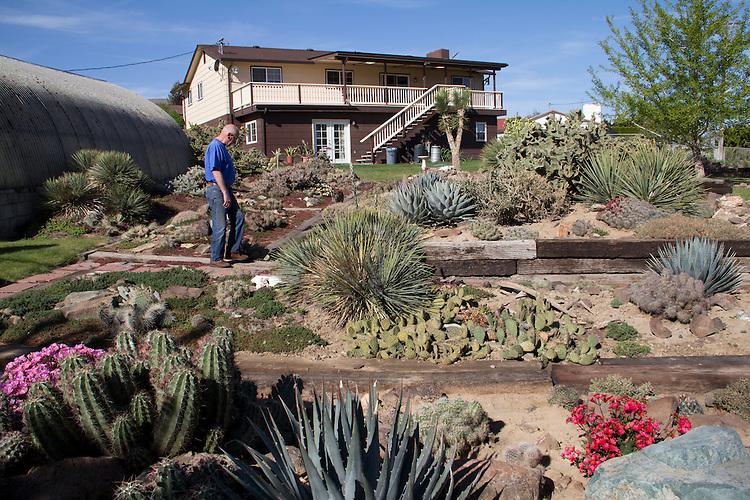 Yakima, Hillside Desert Botanical Garden, Ron McKitrick, backyard cactus gardens, Eastern Washington, Yakima County, Washington State, Pacific Northwest, United States,