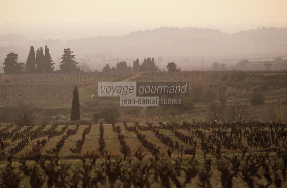 Europe/France/Languedoc-Roussillon/34/Hérault/Saint-Chinian: Vignoble