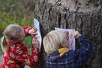 Kinder, Kind machen Abdruck von Rinde, Baumrinde, Baum-Rinde, dazu wird ein Blatt weißes Papier an den Stamm eines Baumes gelegt und mit Wachsmalstiften abgerubbelt. Unterschiedliche Rindentypen ergeben unterschiedliche Abdrücke