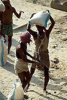 Lastenträger, Varanasi (Uttar Pradesh)Indien