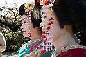Spring season in Kyoto Japan