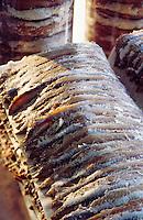 Europe/France/Languedoc-Roussillon/66/Pyrénées-Orientales/Collioure: préparation des anchois de Collioure à la conserverie Roques