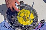 Spray Painting Satellite Tag