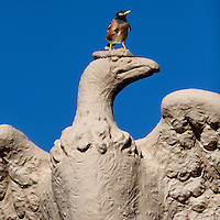 """Victorious"" mynah bird perched atop Sculpture from the Waikiki War Memorial Natatorium, Oahu, Hawaii"