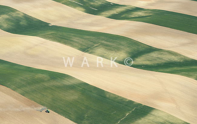 Farmland east of I-25 north of Mead, Colorado. June 2014. 85390