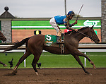 """October 03, 2015: Brody's Cause and jockey Corey Lanerie win the 102nd running of the Claiborne Breeders' Futurity (Grade 1) $500,000 """"Win and You're In Juvenile Division"""" for trainer Dale Romans and owner Albaugh Family Stable. <br /> Samantha Bussanich/ESW/Cal Sport Media"""