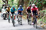 Michael Woods (CAN) EF, Egan Bernal (COL) Team Ineos, Spanish Champion Alejandro Valverde (ESP) Movistar, Jakob Fuglsang (DEN) Astana and Primoz Roglic (SLO) Jumbo-Visma give chase during the 113th edition of Il Lombardia 2019 running 243km from Bergamo to Como, Italy. 12th Octobre 2019. <br /> Picture: Fabio Ferrari/LaPresse | Cyclefile<br /> <br /> All photos usage must carry mandatory copyright credit (© Cyclefile | LaPresse/Fabio Ferrari)