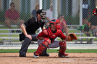 Umpire Reed Basner and Boston Red Sox catcher Austin Rei (28) during an instructional league game against the Minnesota Twins on September 26, 2015 at CenturyLink Sports Complex in Fort Myers, Florida.  (Mike Janes/Four Seam Images)