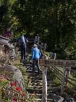 Eingang Meraner Höhenweg bei Leiter Alm, Algund bei Meran, Region Südtirol-Bozen Italien, Europa<br /> Start of hiking trail Merano High Route, Leiter Alm, Lagundo near Merano, Region South Tyrol-Bolzano, Italy, Europe