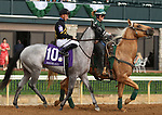 """October 07, 2018 : #10 Next Dance and jockey Adam Beschizza in the 1st running of The Indian Summer $200,000 """"Win and You're In Breeders' CupJuvenile Turf Sprint Division"""" for trainer Mark Casse and owner John Oxley  at Keeneland Race Course on October 07, 2018 in Lexington, KY.  Candice Chavez/ESW/CSM"""