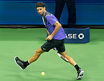 September 5,2019:   Grigor Dimitrov (BUL) loses to Daniil Medvedev (RUS) 7-6, 6-4, 6-3, at the US Open being played at Billie Jean King National Tennis Center in Flushing, Queens, NY.  ©Jo Becktold/CSM