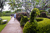 Tourists stroll on a path alongside the lush green topiary garden at the main visitor center at the National Tropical Botanical Garden near Poipu, Kauai.