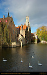 Mute Swans on the Djiver at the Rozenhoedkaai Red Hat Quay, Wollestraat Hotels and Belfort Bell Tower, Bruges, Brugge, Belgium
