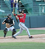 Nate Scantlin - 2019 Billings Mustangs (Bill Mitchell)