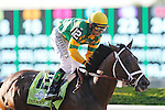 June 8, 2013. Palace Malice, Mike Smith up, wins the Belmont Stakes at Belmont Park, Elmont, New York. Trainer is Todd Pletcher (Joan Fairman Kanes/Eclipse Sportswire)