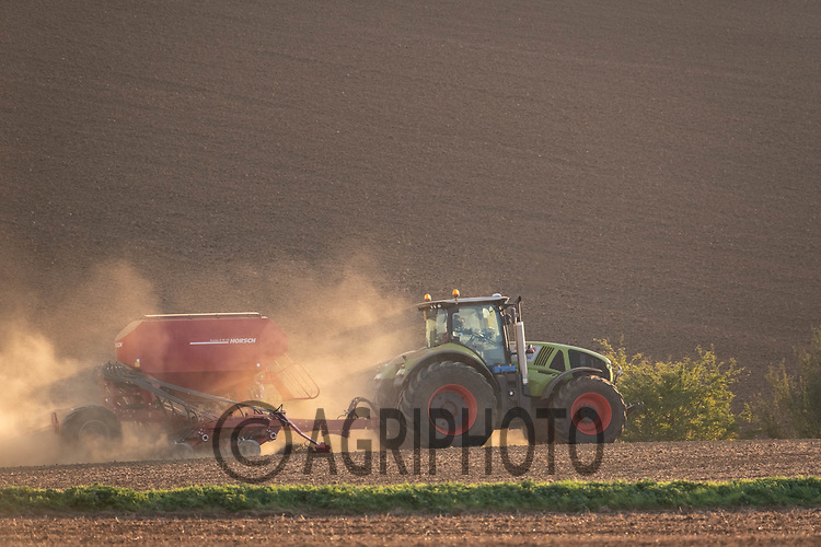 28.9.2020 Drilling Winter Barley in the late evening sun<br /> ©Tim Scrivener Photographer 07850 303986<br />      ....Covering Agriculture In The