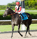 10 July 2010: Warbling and Jockey Julien Leparoux after the Princess Rooney Handicap at Calder Race Course in Miami Gardens, FL.