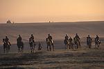 Morning gallops Lower Moor Middleham Yorkshire. 1990s