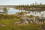 Salt water estuary, Nova Scotia