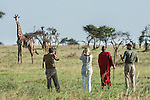 Tourists and guide with Masaai warriors wearing red shukas watching a herd of Maasai Giraffe (Giraffa camelopardalis). Walking safari across the open grassland of the Serengeti National Park, Tanzania.
