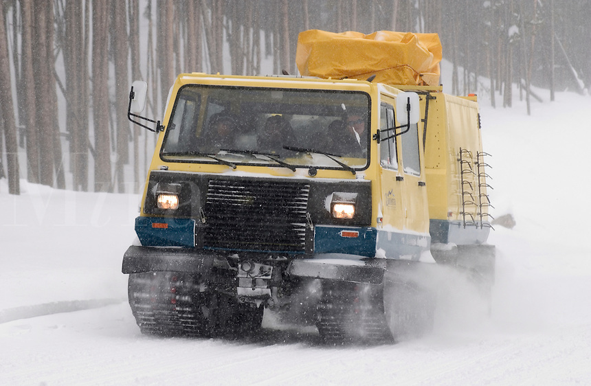 A tracked vehicle, transporting park employees, rumbles down a snowy road in Yellowstone National Park on a cold January mornin
