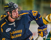 29 December 2013:  Canisius College Golden Griffins forward Ralph Cuddemi, a Sophomore from Concord, Ontario, in first period action against the University of Vermont Catamounts at Gutterson Fieldhouse in Burlington, Vermont. The Catamounts defeated the Golden Griffins 6-2 in the 2013 Sheraton/TD Bank Catamount Cup NCAA Hockey Tournament. Mandatory Credit: Ed Wolfstein Photo *** RAW (NEF) Image File Available ***