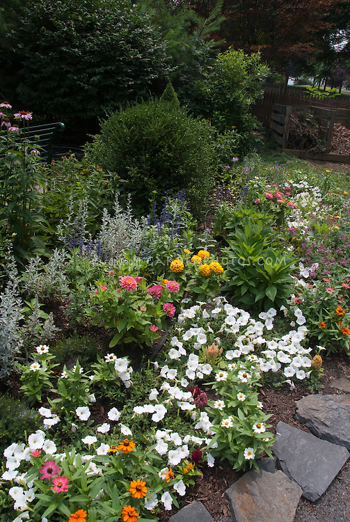Annuals marigolds, zinnias, bachelor buttons, petunias, salvia farinacea, with blue flowers, pink, yellow, lavender, in summer garden