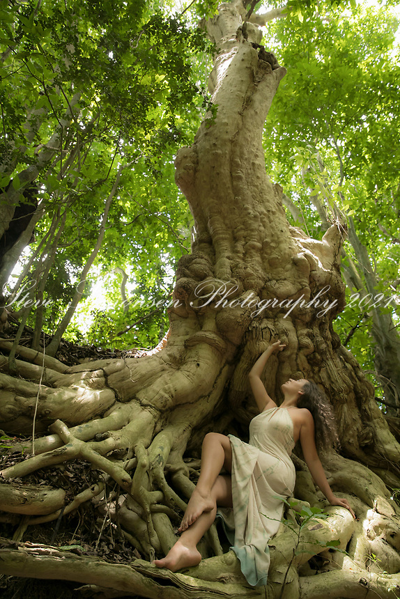 Olivia and the tree<br /> Rainforest <br /> St. Croix<br /> US Virgin Islands