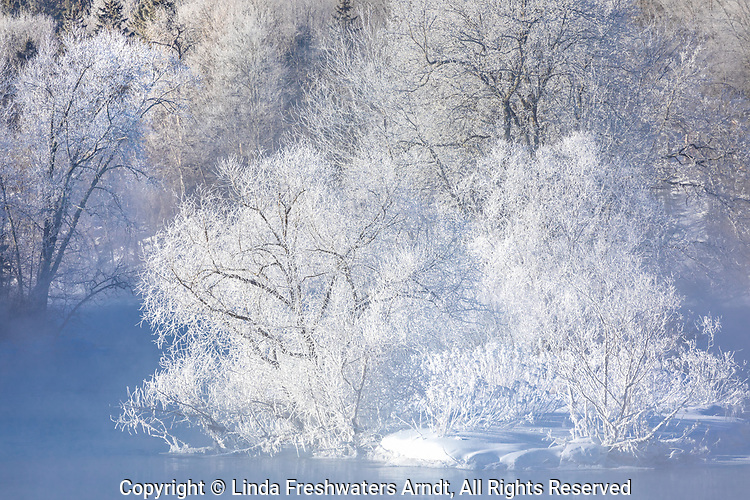 Hoar frost on the Chippewa River in northern Wisconsin.