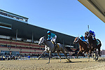 OZONE PARK, NY - APRIL 07: My Miss Lilly (KY) #6, ridden by jockey Joe Bravo, wins the Gazelle Stakes on Wood Memorial Stakes Day at Aqueduct Race Track on April 7, 2018 in Ozone Park, New York. (Photo by Scott Serio/Eclipse Sportswire/Getty Images)