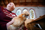 Lynda Koenders holds her pet Chinese silky hen, Rusty, in church during the annual blessing of animals service at the Church of St. John the Divine in Victoria, British Columbia, Canada.