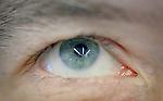 2.28.12 - Eye See....