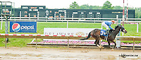 Papa's Forest winning at Delaware Park on 6/3/13