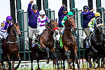 October 31, 2015 : The field leaves the starting gate during the Sentient Jet Breeders' Cup Juvenile (Grade I) in Lexington, Kentucky on October 31, 2015.  Zoe Metz/ESW/CSM