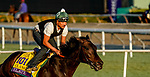 October 27, 2019 : Breeders' Cup Distaff entrant Elate, trained by William I. Mott, exercises in preparation for the Breeders' Cup World Championships at Santa Anita Park in Arcadia, California on October 27, 2019. John Voorhees/Eclipse Sportswire/Breeders' Cup/CSM